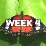 SCL Challenge Week 4