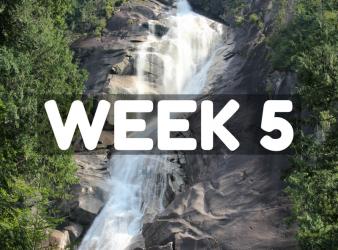SCL Challenge Week 5